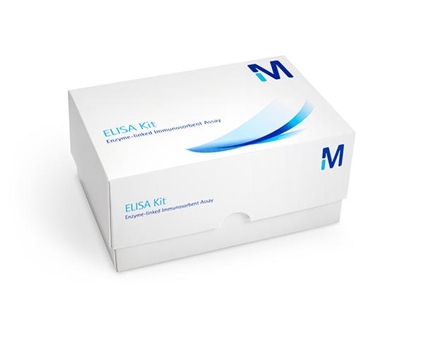 Millipore/ECM300 | QuantiMatrix Human Fibronectin ELISA/ECM300/1 kit